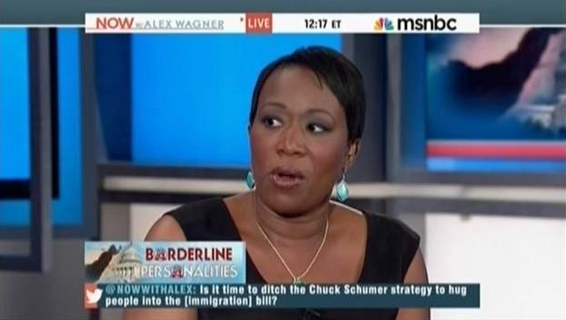Msnbc s reid fumes republicans don t want to add more brown people